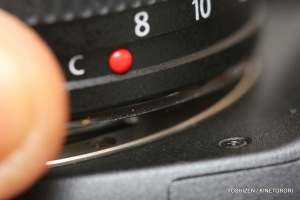 Holding Lens lifted-A09A2159