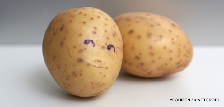 Potato-A09A2013