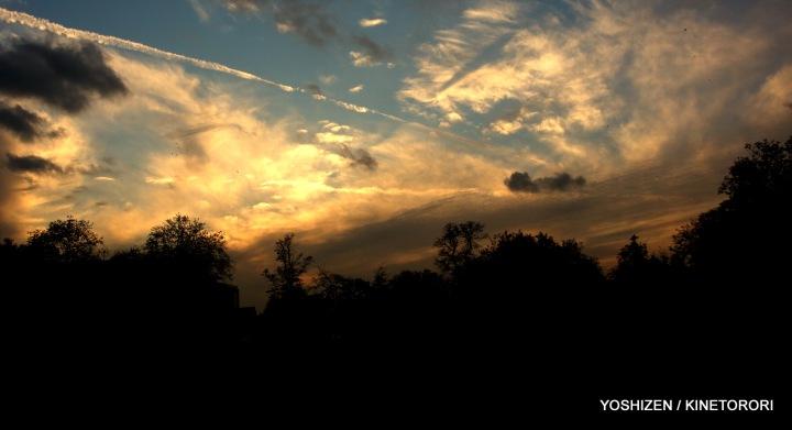 Autumn Color-II-(12)A09A1583