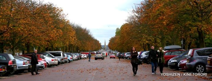 Autumn Color(1)A09A1311