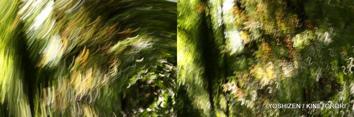 Karenisque Green(7)112-001