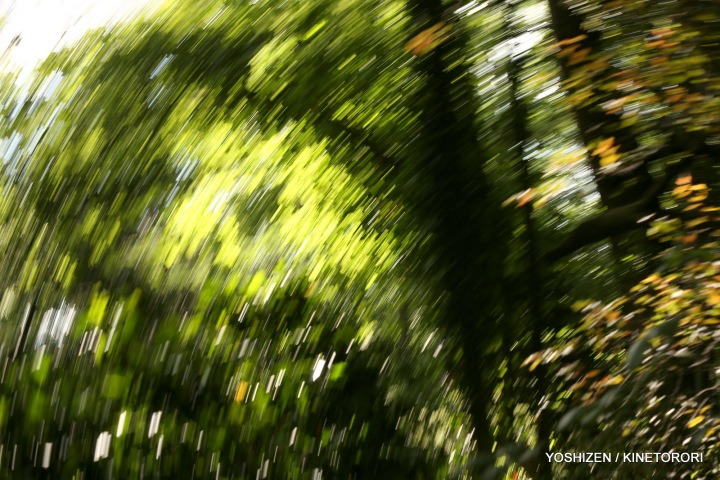 Karenisque Green(8)A09A0699
