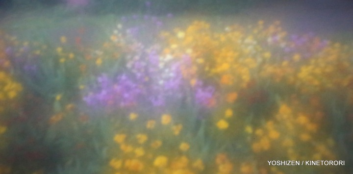 New-DD pinhole Flower(7)A09A0008