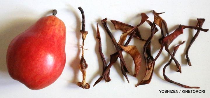 Pear Skin(3)-A09A4094