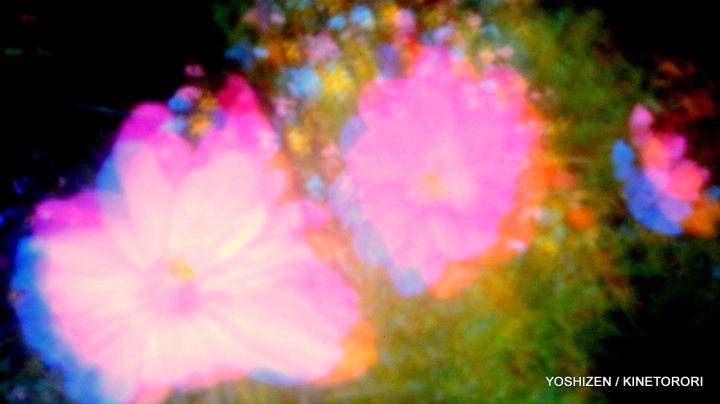 Sky-Pink-O-01-A09A4531