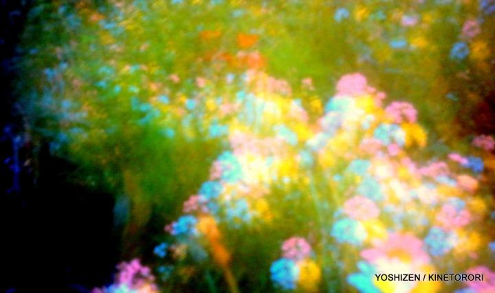 Sky-Pink-O-06-A09A4532