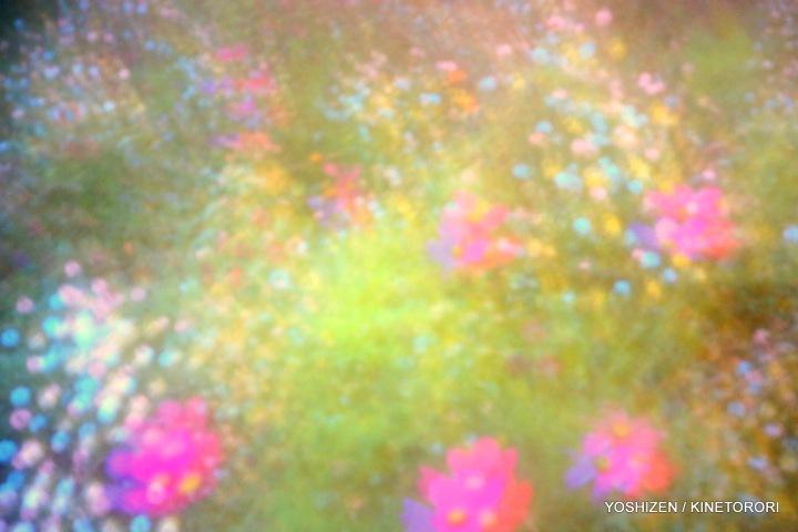Sky-Pink-O-12-A09A4602