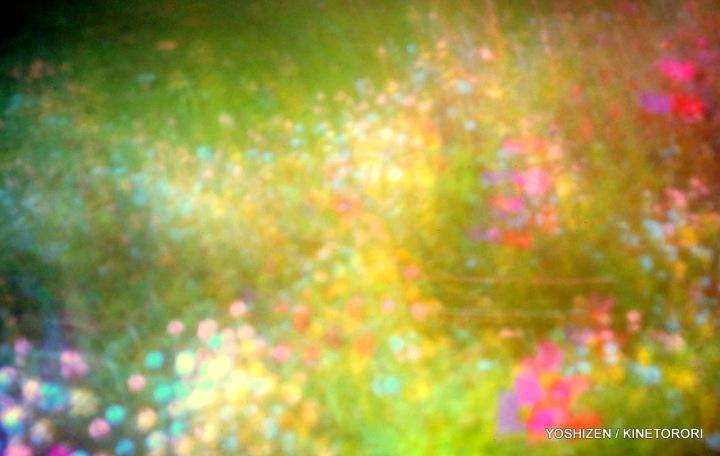 Sky-Pink-O-14-A09A4598