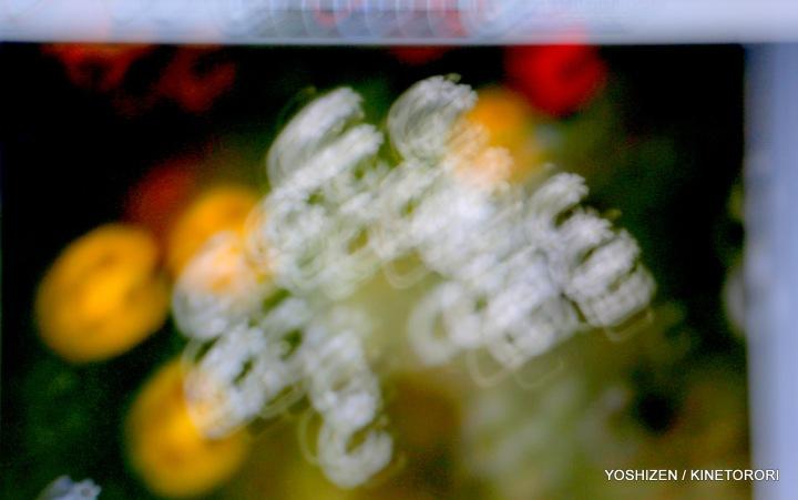 Soft Blur-1-A09A5814