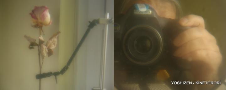 2Ele Nikon