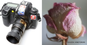 Zeiss Taron Lens-2-001
