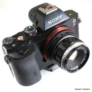 pen-f-38mm3-a09a6830