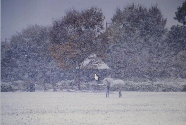 snow-jiji1-a09a7088
