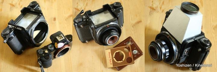 Brownie(C)(3)-5-002