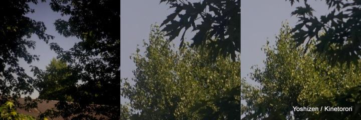 Ikonta mini(6)- A7R